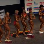 Pasaulio jaunimo ir veteranų čempionatas Čekijoje 2008 m.