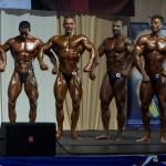 Pasaulio vyrų klasikinio kultūrizmo čempionatas 2008 m.