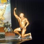 """Varžybos """"Saulės taurė-2010"""" Šiauliuose"""