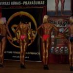 Vilniaus miesto pirmenybės Grigiškėse, 2010 m.