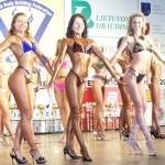 WFF Lietuvos atviras čempionatas Klaipėdoje 2008 m.