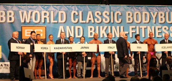 Pasaulio čempionatas Austrijoje 2013 m.